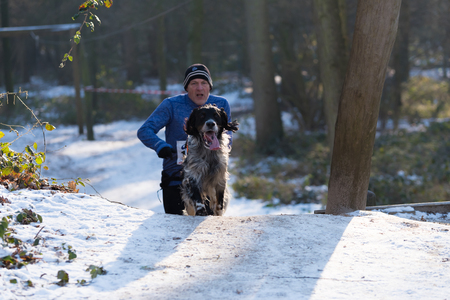 OLDENZAAL, NETHERLANDS - JANUARY 22, 2017: Unknown man canicross running in a snow white forest Editorial
