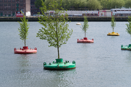 projekt: ROTTERDAM, NETHERLANDS - MAY 14, 2016: Small elm trees on re-used buoys in the rotterdam Rhine harbor. It is a concept of Jeroen Everaert, founder of Mothership, based on the artwork 'In Search of Habitus' by artist Jorge Bakker. Editorial