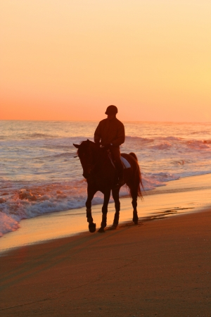 Lonely horse rider on mediterranean beach at sunset Reklamní fotografie
