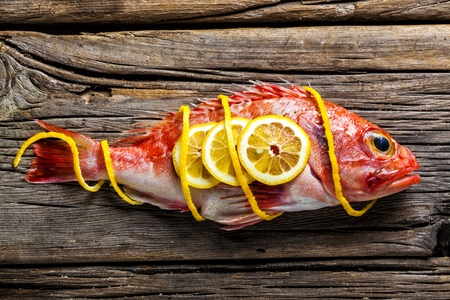 scorpionfish: Red scorpionfish on a worn out wooden table Stock Photo