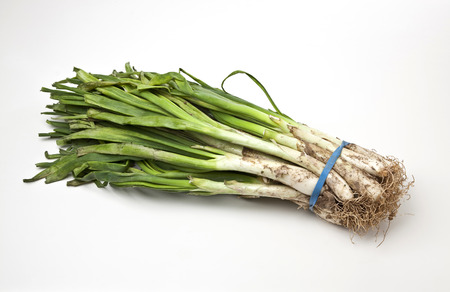 A bunch of calcots, typical from Catalonia, Spain.