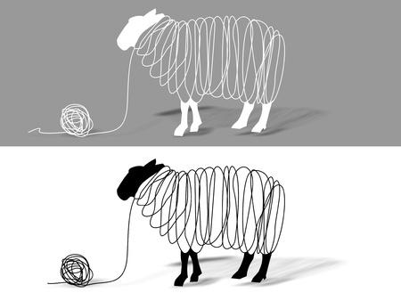 Sheep wool 写真素材