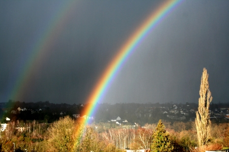 double rainbow against a dark gray background