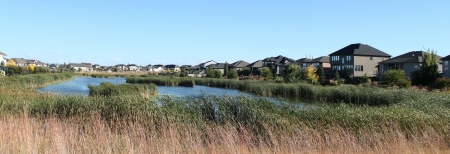 A suburb with the view of a lake that has grown into a marsh  photo