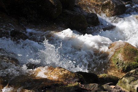 rapidly: Rapidly flowing water near a waterfall