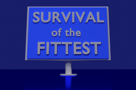 Survival of the fittest plane in 3D Letters on a blue glossy Stock Photo