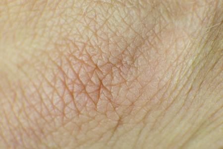 piel humana: Detalle de nudillo piel humana, Foto de archivo