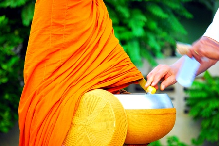 Hand of person offering, putting or giving alms food into monk's alms bowl with green plant background - Selective focus on body of monk. The culture and  tradition of Thai people