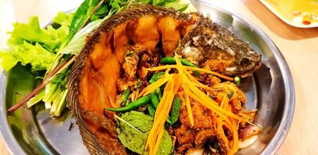 Spicy snakehead fish with fresh vegetable on stainless steel tray. Asian food