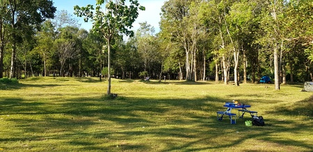 Blue table with seat and black plastic bag for dumping on green grass field with sunlight and  with tree plant and tent background at Jetkod-Pongkonsao Natural Study, Saraburi, Thailand - Rest day
