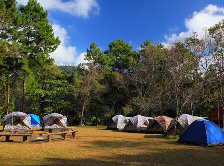 Camping area with many tent for tourism sleep and take a rest among nature with green tree and blue background at national park, Thailand. Landmark for tourist visited natural and Activity