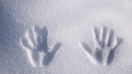 Handprint on snow. imprint hands on white snow