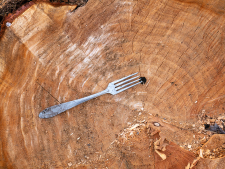 Many metal table forks are thrown in a wooden background