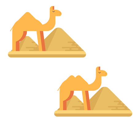 A set of two camels on the background of pyramids of giza. Flat vector design illustration