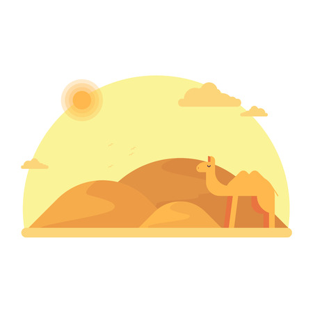 A camel stands in the background of the dunes. Around camel the hot sandy desert. Flat vector illustration