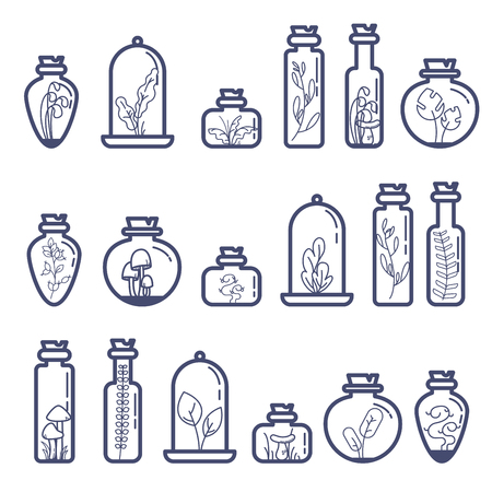 Set of different terrarium bottles with grass and mushrooms vector illustration