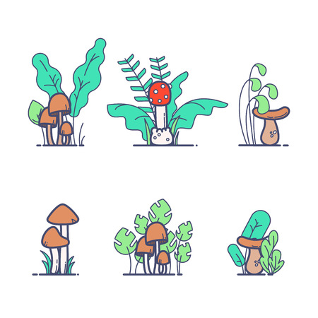 Flat outline colored mushrooms with grass Vector illustration