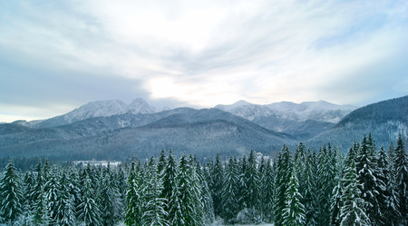 Panoramic view on Tatra Mountains in the evening