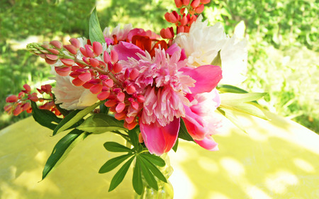 Bunch of pink peony flowers with lupine clusters on yellow table in the garden