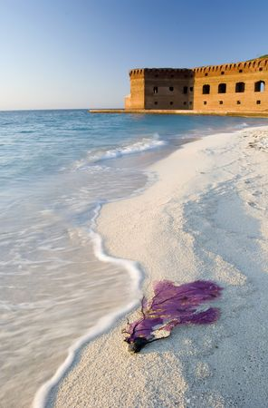 dry tortugas: Ft. Jefferson, Dry Tortugas National Park