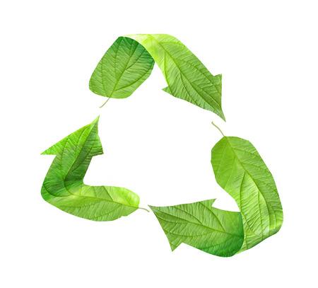 saludable logo: Símbolo de reciclaje ecológico compuesto de hojas verdes