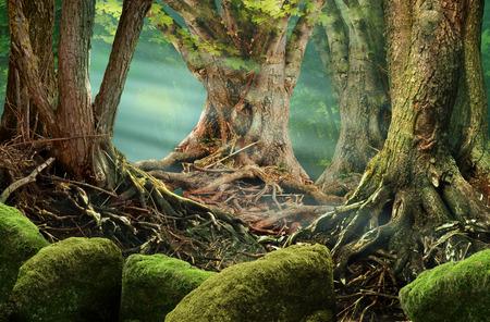 Fantasie Waldlandschaft mit Sonnenstrahlen, alten Bäumen und moosigen Felsen