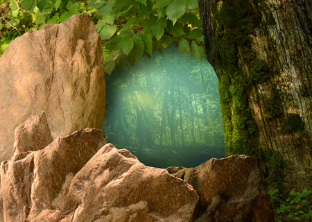 Blue shady forest framed by wild rocks, green leaves and dark mossy tree. Natural window through natural wild frame. Stok Fotoğraf
