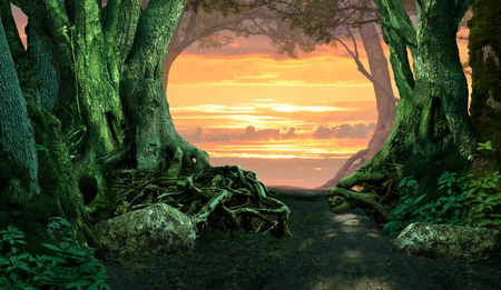 Mysterious twilight forest with sunset sky