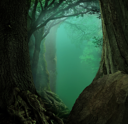 Fantasy forest with dark trees, roots, stone and blue misty background