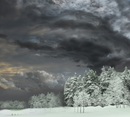 Dramatic grey stormy clouds over winter forest landscape