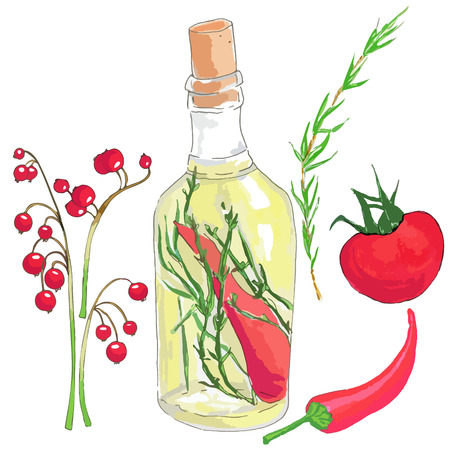 viburnum: Set of red vegetables, olive oil and berries: viburnum on a branch, a bottle with green olive oil, chili peppers, herbs and spices, tomato, red chili pepper