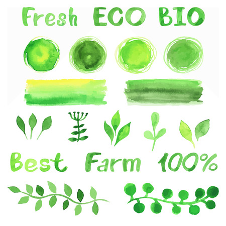 Set van aquarel organische bio achtergronden, vlekken, lettertype, logo. Waterverf het organische, bio, natuurlijke design elementen voor logo of uw project. Vintage vector aquarel in groene kleuren.