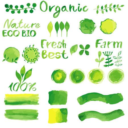 saludable logo: Conjunto de acuarela org�nica bio fondos, manchas, fuente, logotipo. Acuarela org�nica, bio, elementos de dise�o naturales para el logotipo o cualquier proyecto. acuarela vector de la vendimia en colores verdes. Vectores