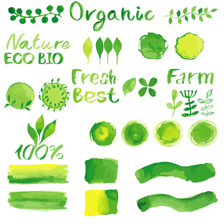 Set of watercolor organic bio backgrounds, spots, font, logo. Watercolor organic, bio, natural design elements for logo or any your project. Vintage vector watercolor set in green colors.