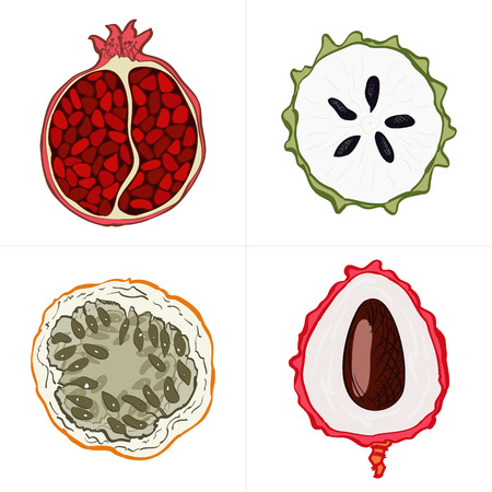 veg: Set of fresh hand drawn fruits and vegetables and products. Eco healthy food. Illustration