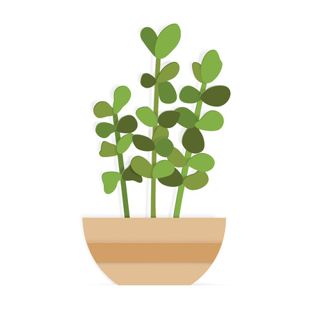 House plant in a brown pot in paper art style. Vector illustration with indoor succulent flower.