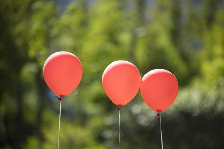 balloons in the green park. Stockfoto
