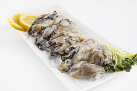 oysters on a white plate with ice and lemon.