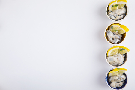 Raw fresh oysters with lemon slices_copy space. Stok Fotoğraf