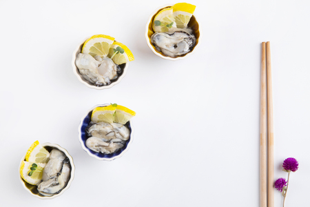 fresh oysters on white background.