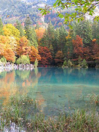 Trouty lake Blausee, Switzerland photo
