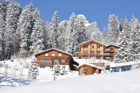 Majestic Alpine view. Switzerland photo