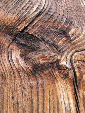 knothole: Tarred veining