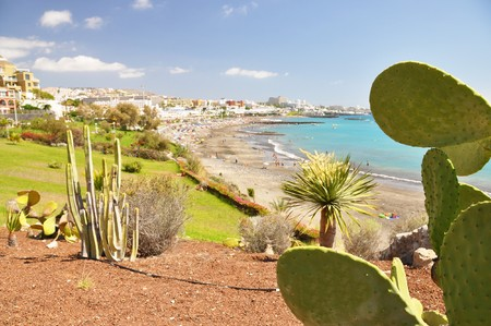 Torviscas Playa. Teneriffa, Kanarische Inseln