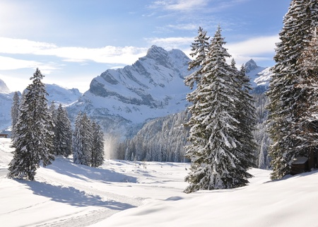 Braunwald, famous Swiss skiing resort  photo