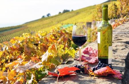 Red wine in Lavaux region Switzerland