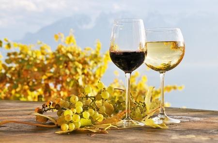Twho Gläser Wein und Trauben. Lavaux-Region, Schweiz