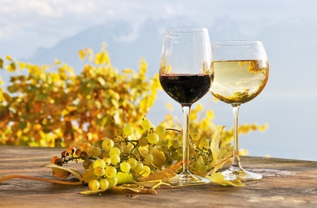 Twho glasses of wine and bunch of grapes. Lavaux region, Switzerland Stock Photo