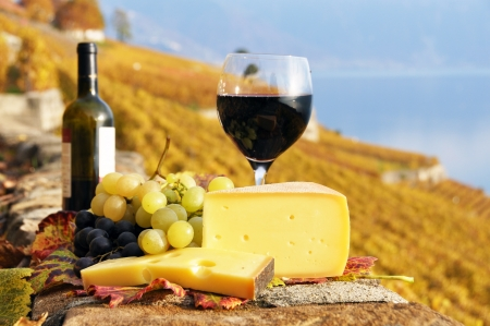 Red wine, cheese and grapes on the terrace of vineyard in Lavaux region, Switzerland  photo
