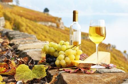 White wine, cheese and grapes on the terrace of vineyard in Lavaux region, Switzerland photo